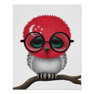 Customizable Nerdy Singapore Baby Owl Chic Poster