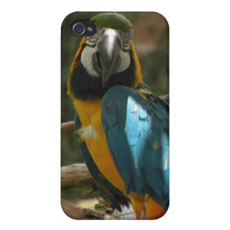 Customizable Parrot iPhone 4/4S Case