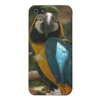 Customizable Parrot iPhone 5 Case