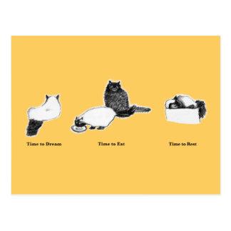 Customizable Postcard—Cats Dream, Eat, Rest Postcard