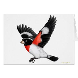 Customizable Rose Breasted Grosbeak Wild Bird Card