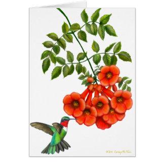 Customizable Ruby Throated Hummingbird on Trumpet Card
