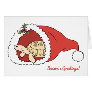 Customizable Russian Tortoise Christmas Card