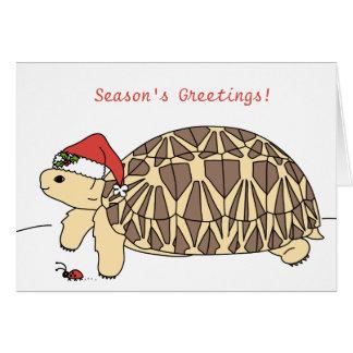 Customizable Star Tortoise Christmas Card