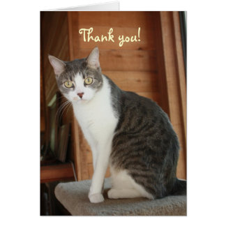 Customizable Thank You Card