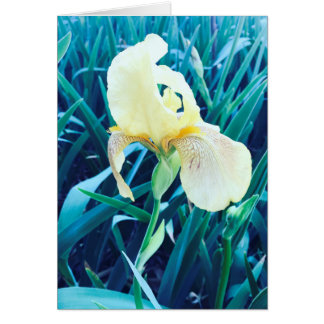 Customizable Yellow Flower Card