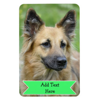 Customize a Family Pet Photo Magnet Add Text