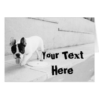 Customize  - Frenchie Template