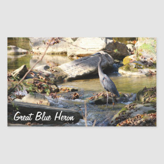 Customize Great Blue Heron standing in creek photo