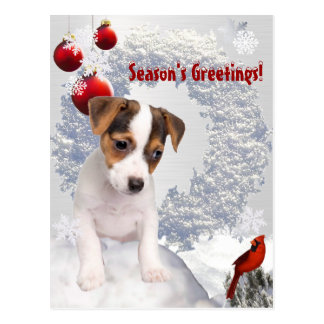 Customize It!  Jack Russell Terrier Christmas Wish Postcard