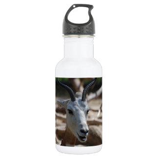 Customize 18oz Water Bottle