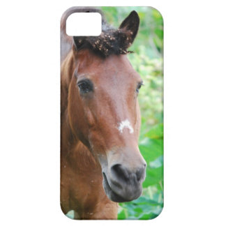Customize Product Case For The iPhone 5