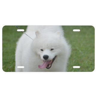 Customize Product License Plate