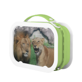 Customize Product Lunch Box