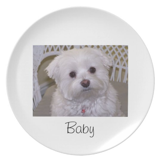 Customize your own dog plate