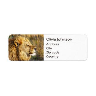 Customized Lion Wild Animal Wildlife Safari Return Address Label