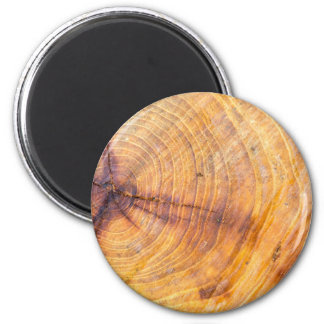 Cut down a tree with annual rings 2 inch round magnet