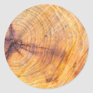 Cut down a tree with annual rings classic round sticker