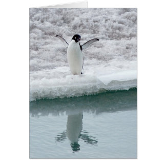 Cute Adelie Penguin Card