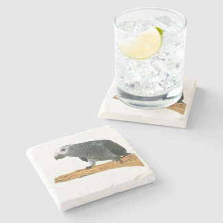 Cute African Grey Coaster Stone Coaster