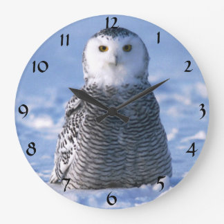 Cute Alaska Arctic Snowy Owl Winter Photo Designed Large Clock