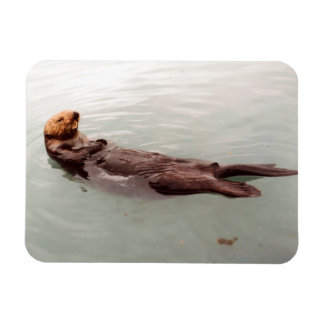 Cute Alaska Sea Otter Photo Designed Refrigerator Rectangular Photo Magnet
