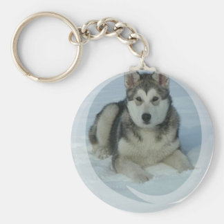 Cute Alaskan Malamute Basic Round Button Keychain