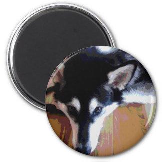 Cute Alaskan Malamute Face 2 Inch Round Magnet