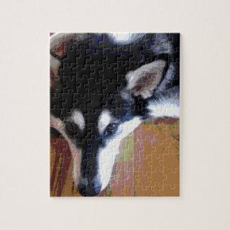Cute Alaskan Malamute Face Jigsaw Puzzle