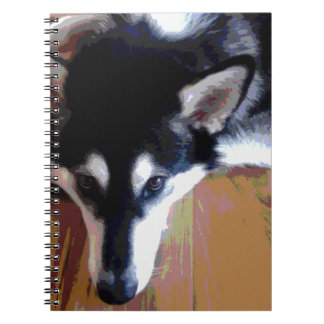 Cute Alaskan Malamute Face Spiral Note Books