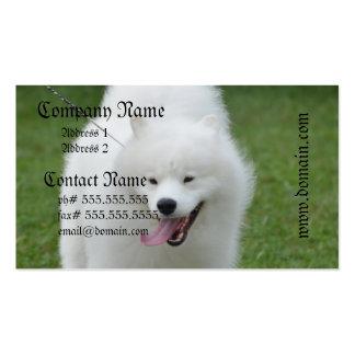 Cute American Eskimo Dog Business Card Templates
