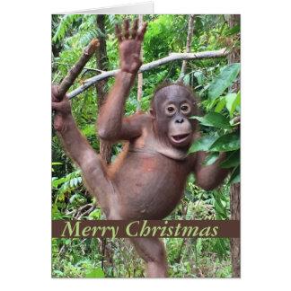 Cute Animal Merry Christmas Orangutan Baby Card