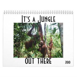 Cute Animal Photography Calendar
