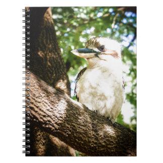Cute Australia Kookaburra Notebooks