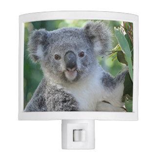 Cute Australian Koala night light