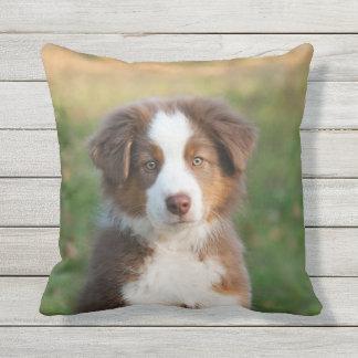 Cute Australian Shepherd Dog Puppy - for Outside Outdoor Pillow