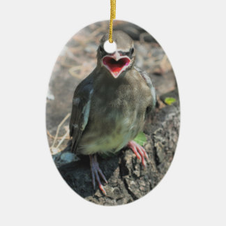 Cute Baby Bird Animal Ornament