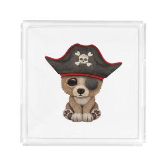 Cute Baby Brown Bear Cub Pirate Acrylic Tray