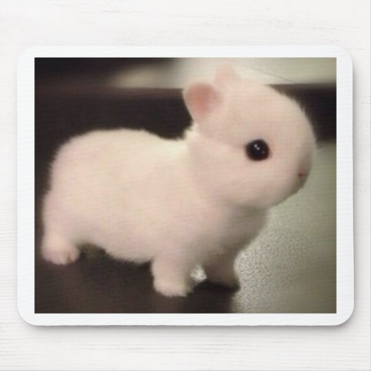 Cute baby bunny mouse pad
