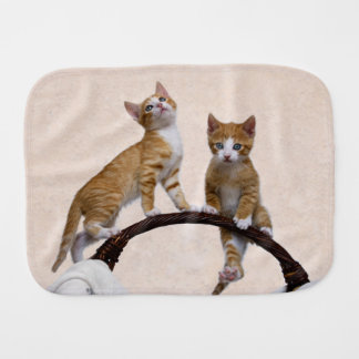Cute Baby Cats Kittens Funny Gym Photo * Burp Cloth