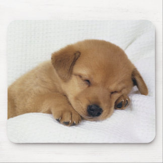 Cute Baby Dog Mouse Pad