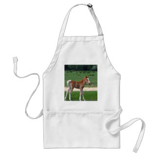 Cute Baby Foal Destiny Gifts Springtime Adorable Standard Apron