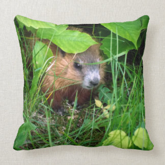 Cute Baby Groundhog Marmotte Murmeltier Throw Pillow