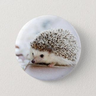 Cute Baby Hedgehog 2 Inch Round Button