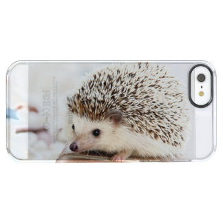 Cute Baby Hedgehog Animal Clear iPhone SE/5/5s Case
