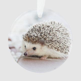 Cute Baby Hedgehog Animal Ornament