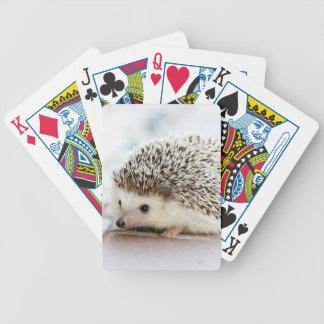 Cute Baby Hedgehog Bicycle Playing Cards