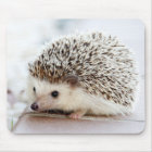 Cute Baby Hedgehog Mouse Pad