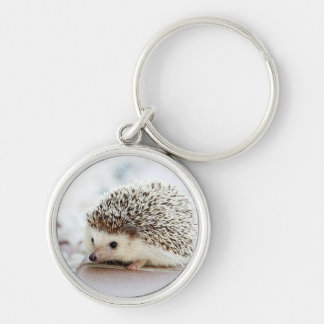 Cute Baby Hedgehog Silver-Colored Round Keychain