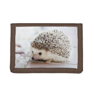 Cute Baby Hedgehog Trifold Wallets